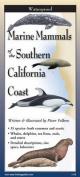 Marine Mammals of Southern California