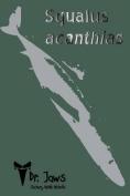 Squalus Acanthias