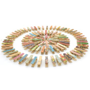 100pcs Zicome Mini Colourful Natural Wooden Photo Paper Peg Pin Clothespin Craft Clips
