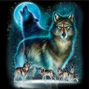 WUKE 36cm X 36cm Inch DIY Handmade Diamond Painting Wolf Resin Rhinestone Pasted Cross Stitch for Home Decoration