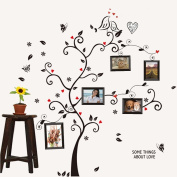Amaonm® Wall Stickers Wall Decals Trees Photo Frame Butterfly Birds and Removable Wall Decor Decorative Painting Supplies & Wall Treatments Stickers for Girls Kids Living Room Bedroom Wallpops