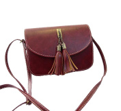 SBD Female Vintage Tassels Small Square Shoulder Bags Shopping Purse Bags