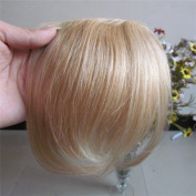 20cm Colour:Blonde Highlight (#27/613) Real Human Hair Fashion Front Hair Neat Bang Fringes One Hair Pieces