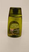 Dalan Olive Oil Peach Blossom Shower Gel TRIPLE PACK pH5.5 Paraben Free 3x250ml