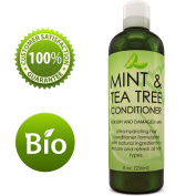 Hydrating Conditioner Mint & Tea Tree Oil For Dry and Damaged Hair With Nutrient Rich Jojoba Tea Tree Lavender for Moisturised Shiny Strong & Rejuvenated Hair for Women Men Teens by Honeydew 240ml