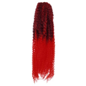 Femi Collection Marley Braid 100% Kanekalon Flame Retardant (#OMBRE 2TRED) + 1 Free Nail Polish