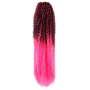 Femi Collection Marley Braid 100% Kanekalon Flame Retardant (#OMBRE 2TH.PINK) + 1 Free Nail Polish