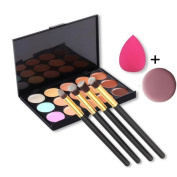 Toraway Pro 15 Colours Makeup Concealer Contour Palette +4 PC Makeup Brush + 1 PC Sponge Puff + 1PC Face Puff