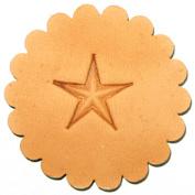 Z785 Large Star Stamp 6785-00