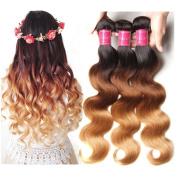 ALI JULIA Brazilian Ombre Body Wave Hair Weave 3 Bundles 7A 100% Human Hair Extensions 95-100g/pc (1b#/4#/27#)