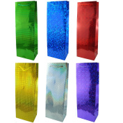 Gift Bags Hologram (Bottle) Pack 6