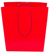 Amscan Apple Red Medium Glossy Gift Bag