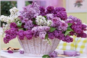 Queenlink Full Pasted DIY Square Diamond Embroidery Paintings Rhinestone Cross Stitch Purple Flowers