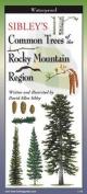 Sibley's Trees of Rocky Mtn. Region