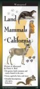 Land Mammals of California