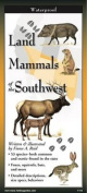 Land Mammals of the Southwest