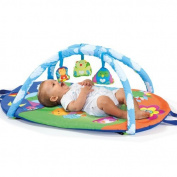 Molto Baby Toddler Activity Gym Mat Activity Gym Travel Discovery Gym Play Mat