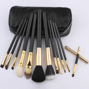 HOYOFO Professional 12 Pieces Cosmetic Makeup Brushes Set Kit with Pouch Case Bag