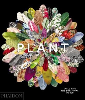 Plant: Exploring the Botanical World