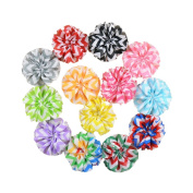 Aisila® 13 Pieces 6.4cm Different Colours Handmade Wave Strip Chiffon Flowers for DIY Headbands Girl Flower Accessories Baby Flower Headbands AIH011