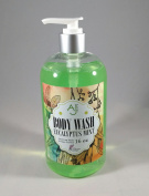 Natural Body Wash - AJ Pure - Organic Ingredients - Sulphate Free - Coconut Oil - Artisan Made - Made in USA - Eucalyptus Mint
