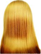 Hongshun 36cm Brazilian Ombre Hair Extension Grade 6A Remy Brazilian Virgin Human Hair Body Wave Hair Weave Two-tone Colour Brown