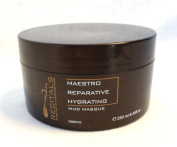 Recitals Maestro Reparative Hydrating Mud Masque 250ml