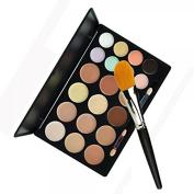 20-Colour Concealer Palette Set with Nylon Foundation Brush 10015036