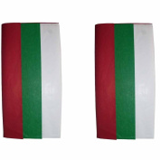 (2) Packages Spritz Tissue Paper Red, Green & White, 12 Sheets