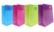 Birthday Gift Bags Party Solid Bright Celebration Glitter Glossy Greetings Bag - 4 Assorted Styles