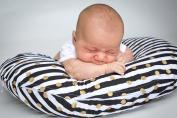 Danha Nursing Pillow Slipcover