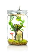 Marmelada Mr. Hedgehog Story In a Jar Night Light Baby Nursery Room Bedtime Lamp