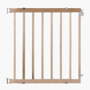 Stairway Swing Pet Gate