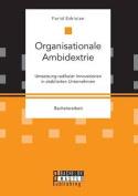 Organisationale Ambidextrie. Umsetzung Radikaler Innovationen in Etablierten Unternehmen [GER]