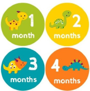 Monthly Baby Stickers Dinosaurs Baby Month Stickers Dino Baby Milestone Stickers