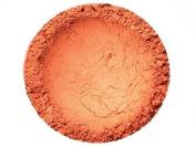 Amber Ward Vegan 100% Natural Mineral Blush For Pale Skin