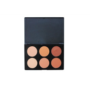 Crown Brushes 6 Colour Pressed Powder Foundation Palette