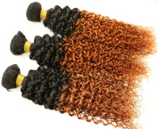 7a Two Tone Jerry Curl Ombre Hair Weaves Brown Colour 1B 30 Peruvian Human Hair 3 pcs lot Ombre Brazilian Jerry Curly Hair Bundles