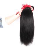 Yaweida Hair 8~70cm Brazilian Virgin Human Hair Extension Silky Straight, Pack of Three, 100g/Bundle, 6A Natural Colour Weft