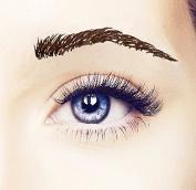 Temporary Tattoo Eyebrows