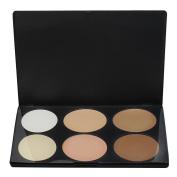 Professional 6 Colours Salon Make Up Cosmetic Beauty Facial Foundation Palette