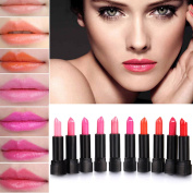 Eshion 10 Colours Makeup Lipstick Lip Balm Pencil Beauty Long Lasting Lip Stick Set Kit