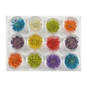 12 Mix Colour Dried Flower Nail Art Decoration Acrylic Nail Gel Nail Art