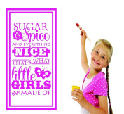 Design with Vinyl RAD 737 2 Sugar & Spice Everything Nice That's What Little Girls Are Made of... Teen Baby Bedroom Quote Design Wall Decal, Pink, 41cm x 60cm