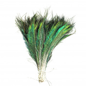 Celine lin Natural Peacock Sword Feathers,25cm - 30cm ,Pack of 100