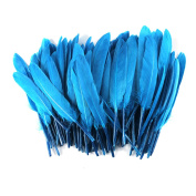 Celine lin 100PCS Dyed Home Decor Goose Feather For Art,Home Party or Wedding 10cm - 15cm ,Lake blue