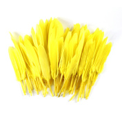 Celine lin 100PCS Dyed Home Decor Goose Feather For Art,Home Party or Wedding 10cm - 15cm ,Yellow
