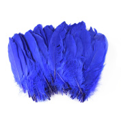 Celine lin 100PCS Dyed Home Decor Goose Feather For Art,Home Party or Wedding 15cm - 20cm ,Sapphire blue
