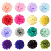 SUNBEAUTY Pack of 20 Mixed Colour Tissue Paper Pom Poms Flower Balls Party Birthday Wedding Hanging Decoration