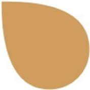 Rit Fabric Dye in 141 Colours - Colour = OAK BLUFF